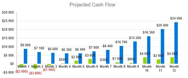 Business Consulting Firm Business Plan - Projected Cash Flow