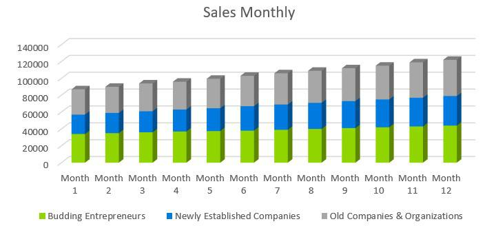 Business Consulting Firm Business Plan - Sales Monthly