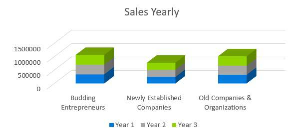 Business Consulting Firm Business Plan - Sales Yearly
