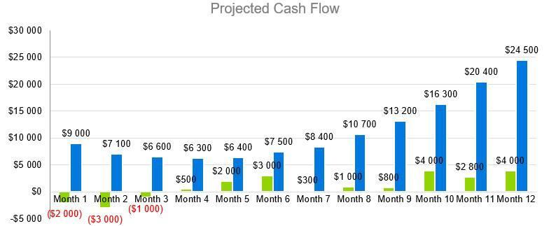 Computer Software Business Plan Sample - Projected Cash Flow