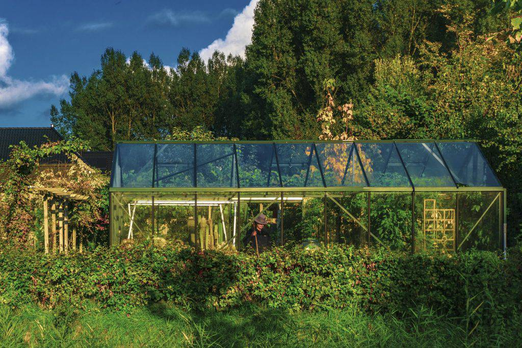 Business plan of greenhouse vegetable business sample resume asst manager