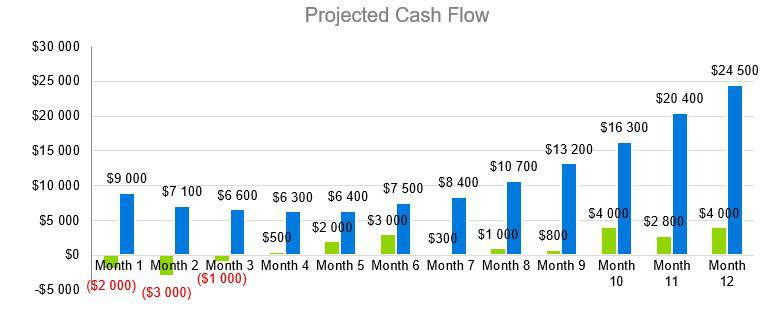 Small Liquor Store Business Plan - Projected Cash Flow