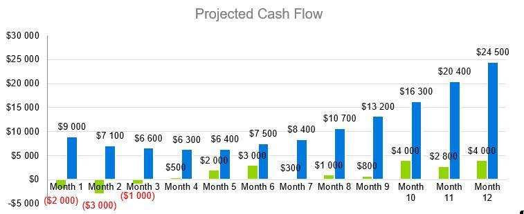 Window Tint Business Plan - Projected Cash Flow