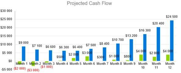 Projected Cash Flow - Digital Marketing Agency Business Plan Template