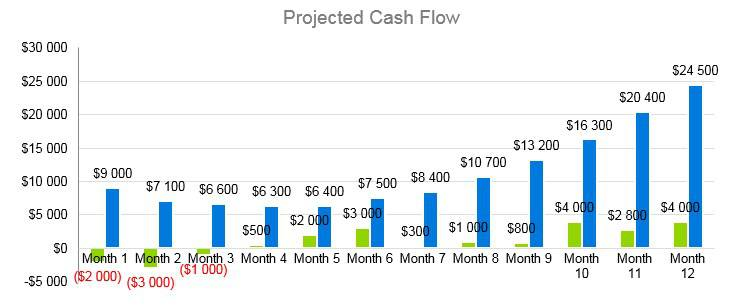 Mobile Notary Business Plan - Projected Cash Flow