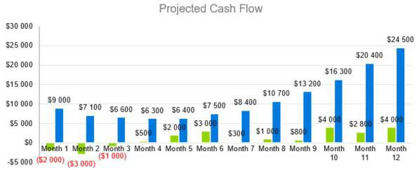 Projected Cash Flow - Courier Company Business Plan Template